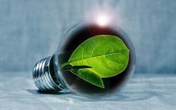 Coltivare innovazione e lavoro sostenibile